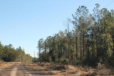 LOT 5 FOREST HILLS DRIVE, Milton, FL 32570 - Photo 2