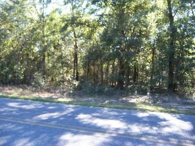 7 AC MARTIN ROAD, Defuniak Springs, FL 32433 - Photo 1