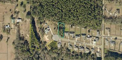 LOT 8 LONG NEEDLE COURT, Baker, FL 32531 - Photo 1