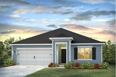 325 THIS WAY # LOT 50, Freeport, FL 32439 - Photo 1
