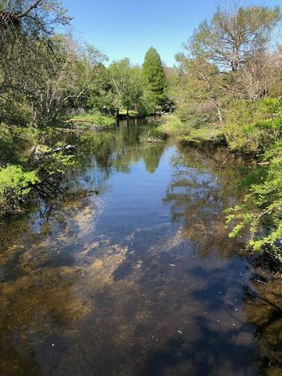 30 STATE HIGHWAY 20 W, FREEPORT, FL 32439 - Photo 1