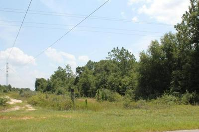 10.79 AC WILKERSON BLUFF ROAD, Holt, FL 32564 - Photo 1