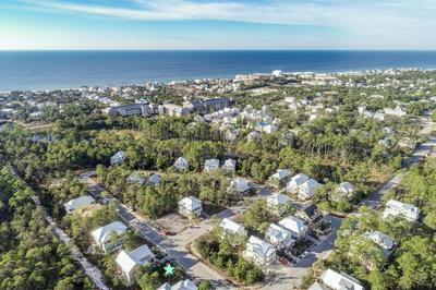 12 MATTS WAY, Santa Rosa Beach, FL 32459 - Photo 2