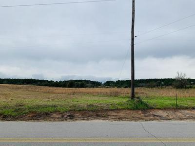 XXX HOLLOWAY RD., Baker, FL 32531 - Photo 2