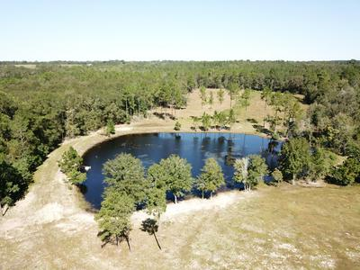 2605 COUNTY HIGHWAY 2, Laurel Hill, FL 32567 - Photo 1
