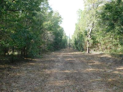 1.5 AC WILKERSON BLUFF ROAD, Holt, FL 32564 - Photo 1