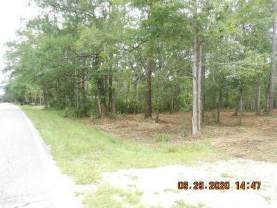 533 MCDANIELS FISHCAMP RD, Freeport, FL 32439 - Photo 1