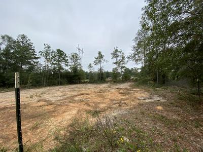 50 E POINSETTA AVE, Defuniak Springs, FL 32433 - Photo 2