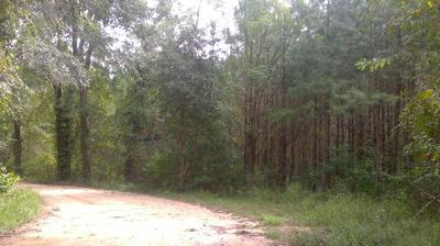 15 ACRES S JACK RD, Laurel Hill, FL 32567 - Photo 1
