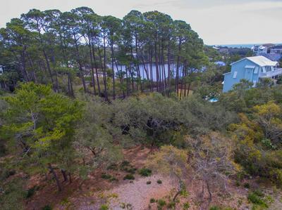 11 LOON LAKE DR, SANTA ROSA BEACH, FL 32459 - Photo 2