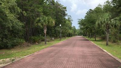 31 RIKER AVE LOT 5-B, SANTA ROSA BEACH, FL 32459 - Photo 2
