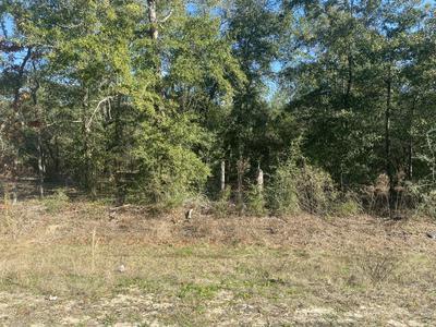 5.7 ACRES WATSON ROAD, Defuniak Springs, FL 32433 - Photo 2