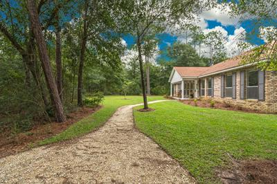 764 TRAWICK CREEK RD, Holt, FL 32564 - Photo 2