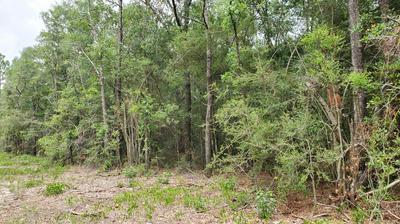 XXX HWY. 90, Defuniak Springs, FL 32433 - Photo 1