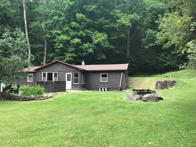 6217 CUNNINGHAM CREEK RD, Canisteo, NY 14823 - Photo 1
