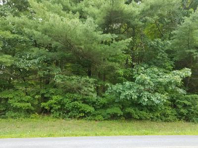 0 BRONSON HILL RD., Watkins Glen, NY 14891 - Photo 2