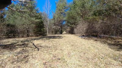 0 (50) GREENBUSH RD., Erin, NY 14838 - Photo 1