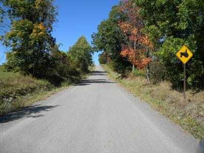 3079 ROBINSON RD, Wellsburg, NY 14894 - Photo 2