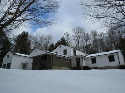 317 SANDBANK RD, Erin, NY 14838 - Photo 1