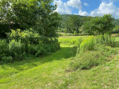 6504 ROUTE 328, Millerton, PA 16936 - Photo 2
