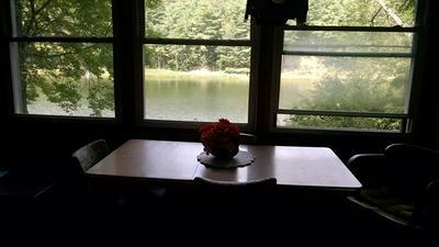 3819 S GOODHUE LAKE RD, Addison, NY 14801 - Photo 2