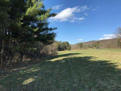 0 HOFFMAN HOLLOW RD., Lowman, NY 14861 - Photo 1
