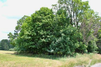 0 STATE ROAD, Middlebury Center, PA 16935 - Photo 2