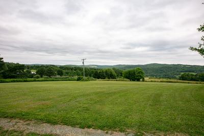 280 BALLOU HILL RD, Berkshire, NY 13736 - Photo 2