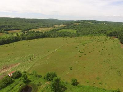 14872, Pine Valley, NY Real Estate | RE/MAX