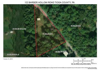 122 BARBER HOLLOW RD, Tioga, PA 16946 - Photo 2