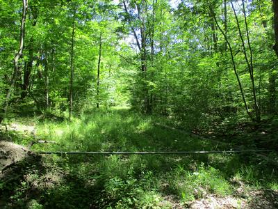 381 JOE GREEN RD, Lowman, NY 14861 - Photo 1