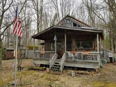 100 HANDS HILL RD, Candor, NY 13864 - Photo 1