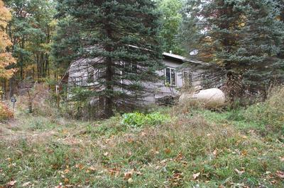 4636 MACKEY RD, Avoca, NY 14809 - Photo 1
