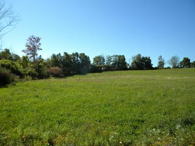 3079 ROBINSON RD, Wellsburg, NY 14894 - Photo 1