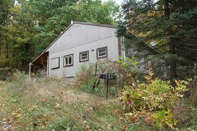 4636 MACKEY RD, Avoca, NY 14809 - Photo 2
