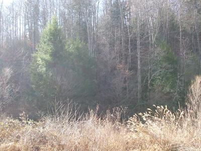 00 HIGHWAY 378 MIDDLE FORK, Salyersville, KY 41465 - Photo 1