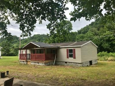 961 ROCKCASTLE RD, Inez, KY 41224 - Photo 2