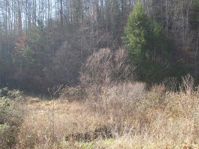 00 HIGHWAY 378 MIDDLE FORK, Salyersville, KY 41465 - Photo 2