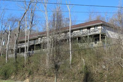 150 MILL BRANCH RD, Paintsville, KY 41240 - Photo 1