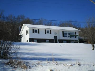 951 CHARLOTTE VALLEY RD, SUMMIT, NY 12175 - Photo 1