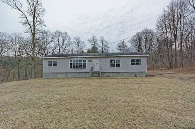 160 WHITBECK RD, COEYMANS HOLLOW, NY 12046 - Photo 2