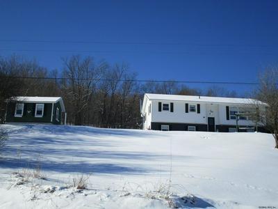 951 CHARLOTTE VALLEY RD, SUMMIT, NY 12175 - Photo 2