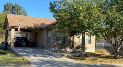 RAINTREE DR., Eagle Pass, TX 78852 - Photo 2