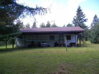5648 W POGLESE TRL, Hessel, MI 49745 - Photo 1