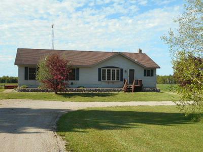 15321 SANDTOWN RD, Engadine, MI 49827 - Photo 1
