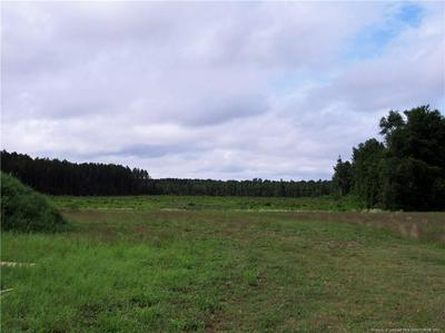 4644 BLUE SAND HILL RD, Stedman, NC 28391 - Photo 2