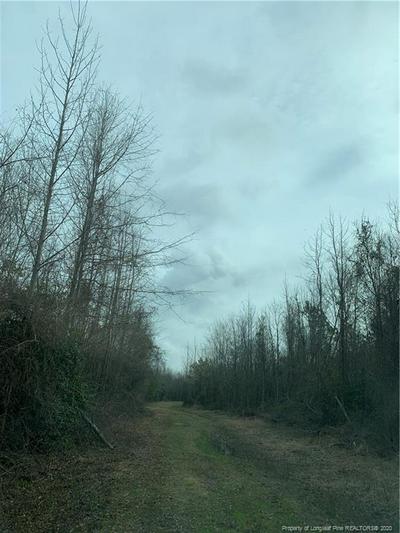2777 STONE RD, Fairmont, NC 28340 - Photo 2