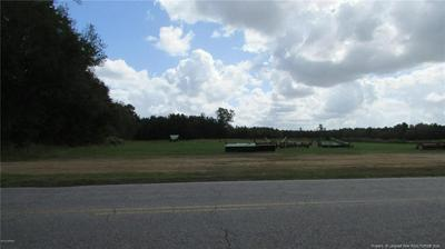 0 PUGH ROAD, Clinton, NC 28328 - Photo 1
