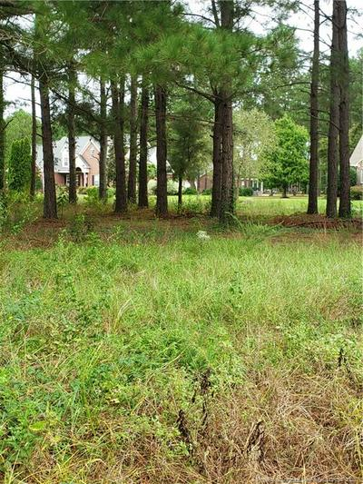 1127 WILD PINE DR, Fayetteville, NC 28312 - Photo 2