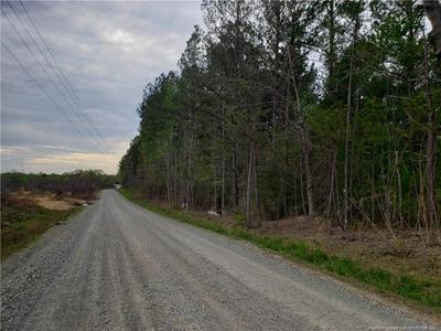 0 ALTON KING ROAD, Goldston, NC 27252 - Photo 2